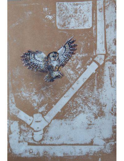 Éxodus, Chouette hulotte par NADEGE DAUVERGNE Posca sur fond d'estampe sur kraft brun - 2019 - ©Association Art'Murs