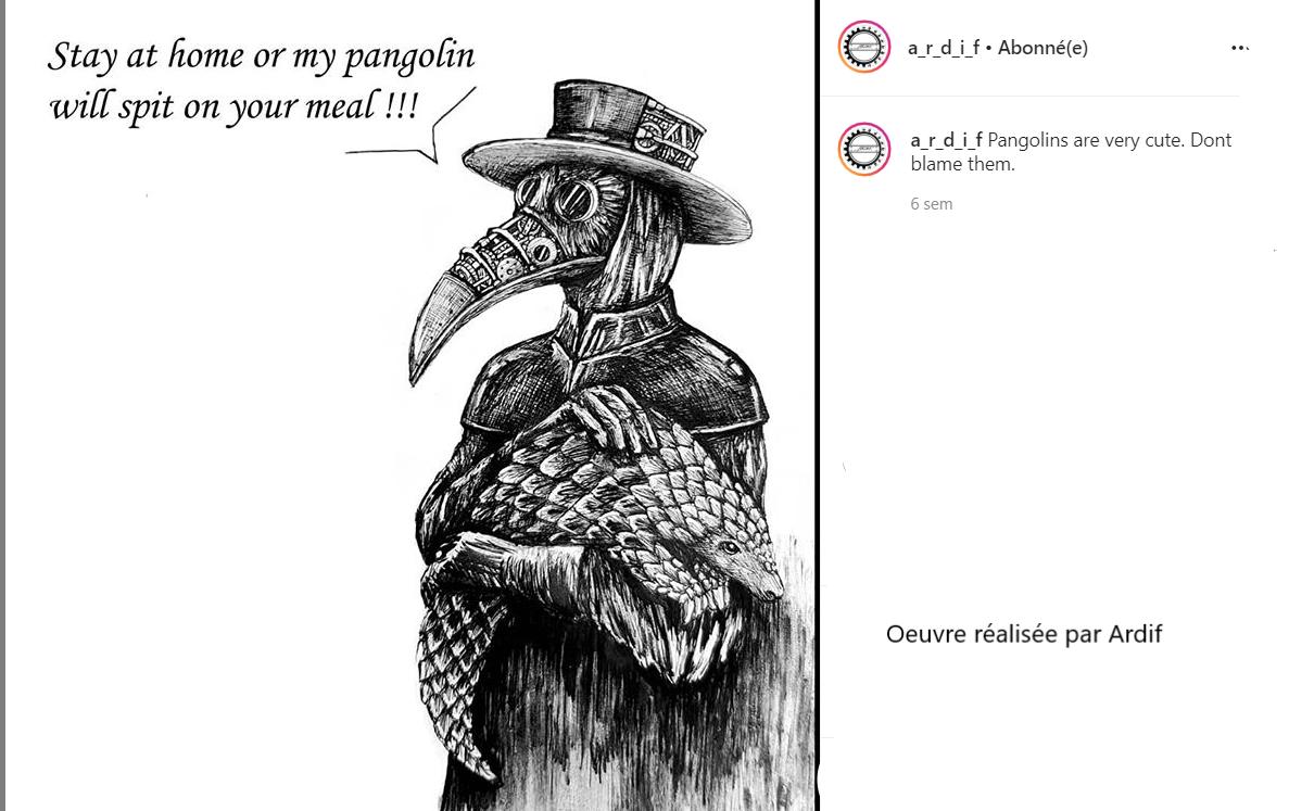 Pangolin par Ardif